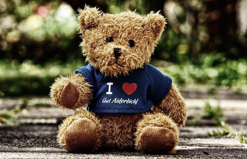 medvídek s tričkem