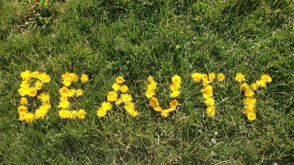 nápis na trávě