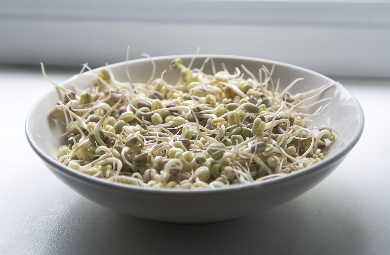 sprouts-1725589_1280